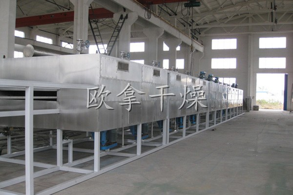 DW Single-layer Mesh-Belt Dryer